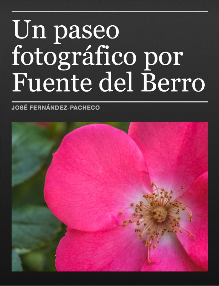 Un paseo fotográfico por Fuente del Berro
