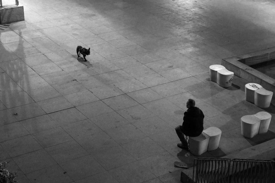 Paseando el perro. Madrid, 2018.