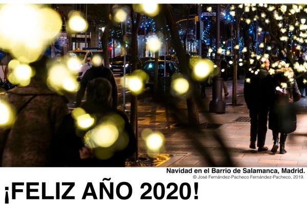 Navidad en el barrio de Salamanca, Madrid.